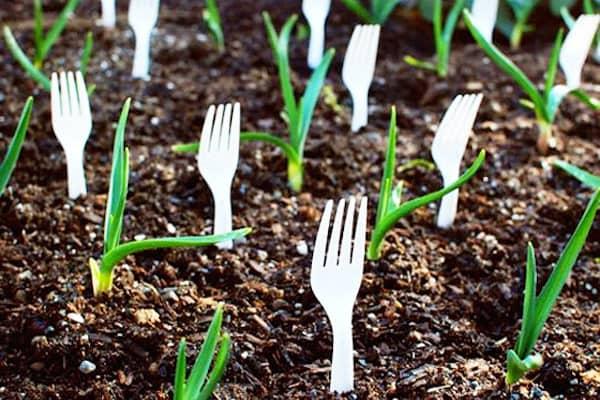 +10 лайфхаков для сада и огорода которые изменят подход к садоводству