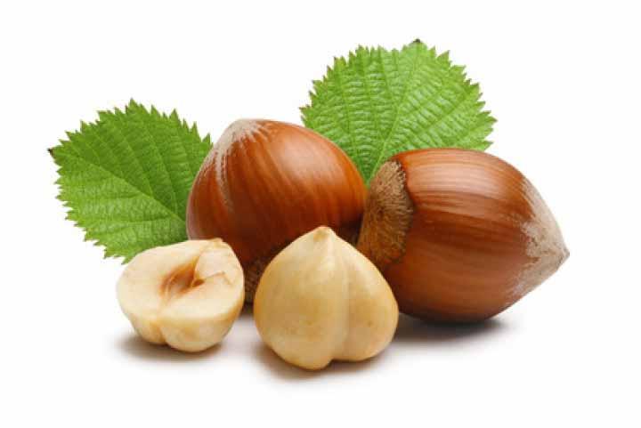 Лесной орех: источник молодости