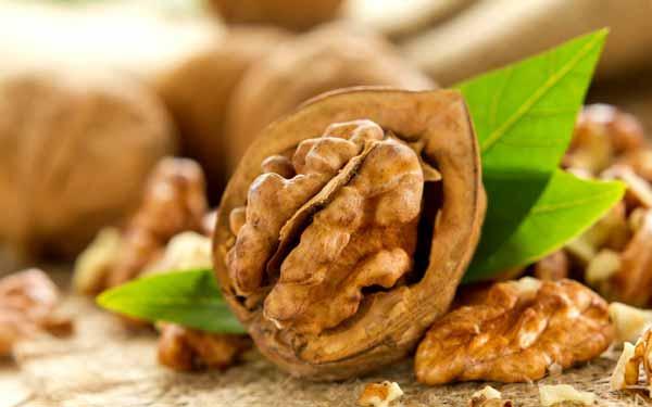 Грецкие орехи: деликатес для мозга