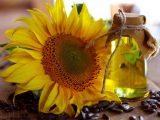 Зерновое масло - ценный источник омега-3 кислот, которые поддерживают память и концентрацию