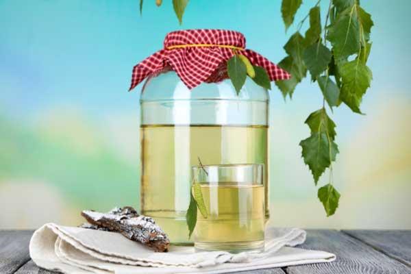 Березовая вода — целебные свойства