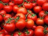 Почему стоит есть помидоры каждый день?