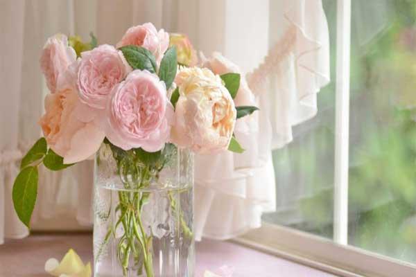 Что делать, чтобы наслаждаться цветами как можно дольше?