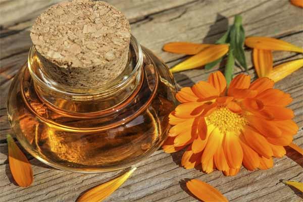 Календула — облегчение для раздраженной кожи