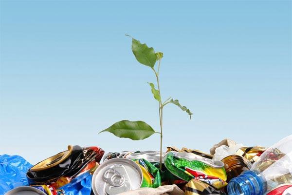 10 простых способов ограничить количество пластика в нашей среде