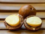 Масло макадамии – натуральный рецепт красоты