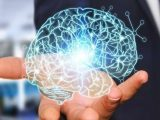 Тренируйте свой мозг, и вы сохраните хорошую память?