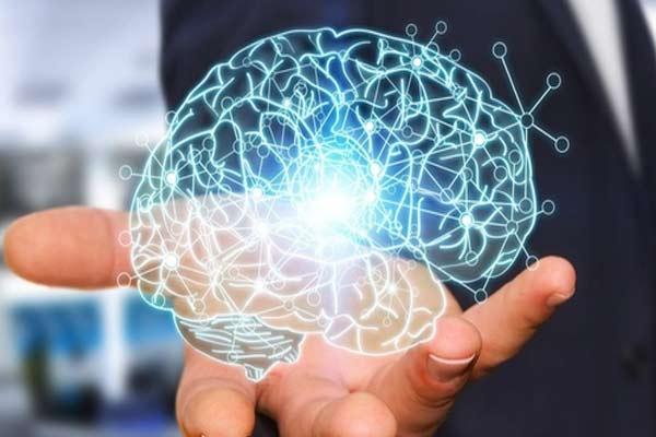 Тренируйте свой мозг, и вы сохраните хорошую память? Вполне возможно, что первые восемь лет жизни имеют огромное значение